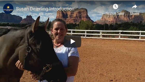 Susan Deierling Team Sedona Real Estate